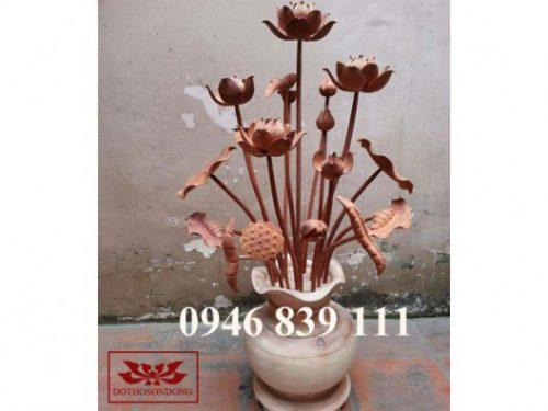 hoa sen gỗ 13